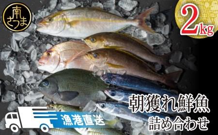 07-H01_南さつま笠沙の鮮魚詰合せ(2.0kg)