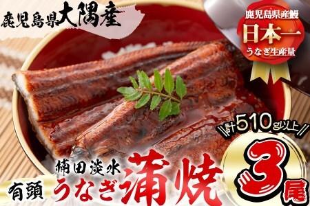 楠田の極うなぎ蒲焼き 特大 3尾