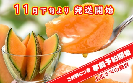 A-053 ☆極上☆志布志産高級メロン『秘蔵っ娘』紅玉1個