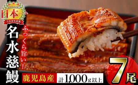C0-003 鹿児島県産うなぎ蒲焼名水慈鰻 7尾