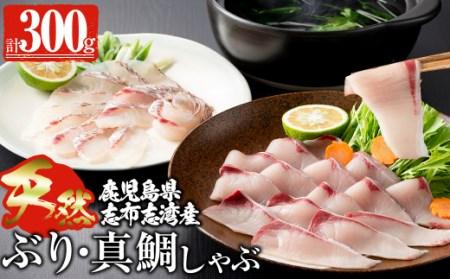 a0-017 【産地直送】今が旬 ブリしゃぶと志布志湾産真鯛のしゃぶしゃぶセット