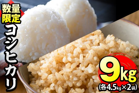 P8-057 【米の匠】川崎さん自慢のコシヒカリ 白米&玄米