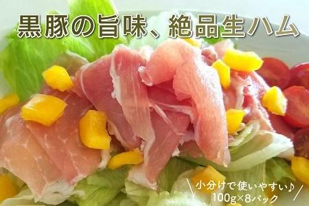 027-06 鹿児島黒豚生ハム切落し800g