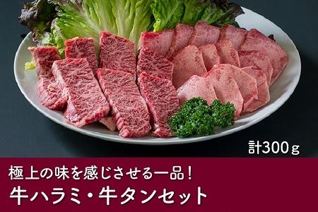 023-10 数量限定!かわなべ牛ハラミ・牛タンセット