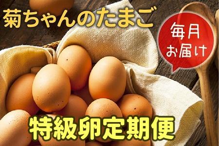 【全12回】菊ちゃんのたまご(特級卵)定期便 042-08