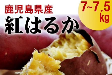 008-59 鹿児島県産紅はるか7~7.5kg