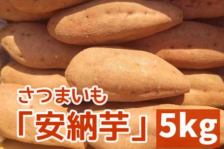 040-08 さつまいも「安納芋」5kg