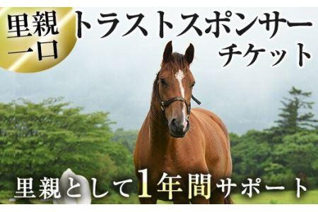 y241 馬主のいない馬を助けたい!トラストスポンサーチケット!里親として1年間サポートするシステムです【NPO法人ホーストラスト】