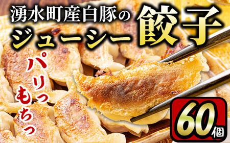y302 原材料にこだわった黒豚ギョーザ 計60個(12個入×5P)便利な冷凍ぎょうざ!肉汁あふれる餃子をお届け!【財宝】