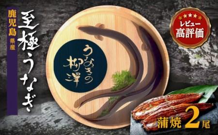 うなぎの柳澤 うなぎ蒲焼2尾セット