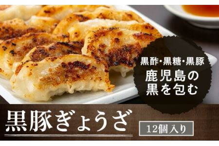 【A02038】黒豚餃子セット(12個入×10パック)