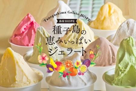 【2610-0085】種子島ジェラート 恵みシリーズ 8個セット