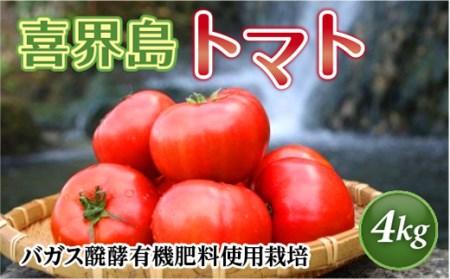 【期間限定】『喜界島トマト』バガス醗酵有機栽培 4kg(20~28玉入り) B-⑲