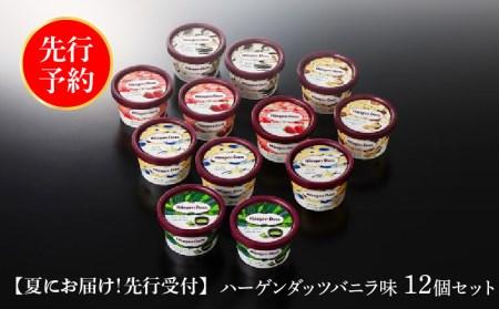 【夏にお届け!】ハーゲンダッツ・アイスクリームセット12個  【100306】