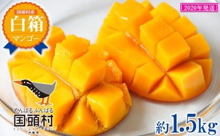 【2020年発送】国頭村産マンゴー《家庭用》3玉~6玉入り(約1.5Kg)