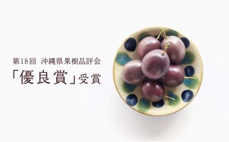 【2021年発送】本部町産情熱の果実パッションフルーツ 家庭用(約1kg~1.2kg)