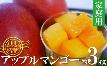 【2022年発送】マンゴーの拠点産地「宜野座村」のアップルマンゴー(家庭用)(3kg)