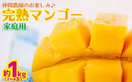仲間農園のお楽しみ(家庭用)完熟マンゴー約1kg(3~4玉)