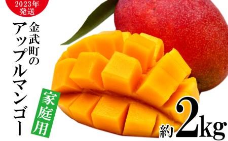 【2020年発送】農家さん直送!アップルマンゴー約2kg 家庭用