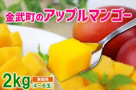 【2018年発送】金武町のアップルマンゴー◆家庭用◆約2kg(4玉~6玉)