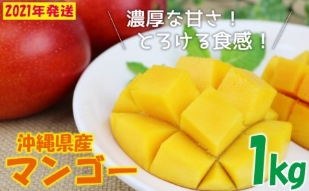 【2020年発送】<トカテン農園>とろける甘さの夏マンゴー1kg