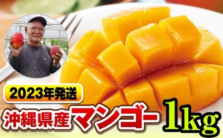 【2022年発送】濃厚な甘さ!とろける食感!沖縄県産マンゴー1kg