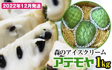 """【2022年1月~3月発送】アテモヤ 1kg """"森のアイスクリーム""""とも呼ばれる希少なフルーツ"""
