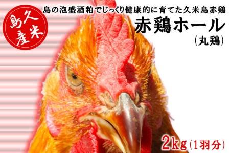 島の泡盛酒粕でじっくり健康的に育てた 久米島赤鶏ホール(丸鶏) 2kg(1羽分)