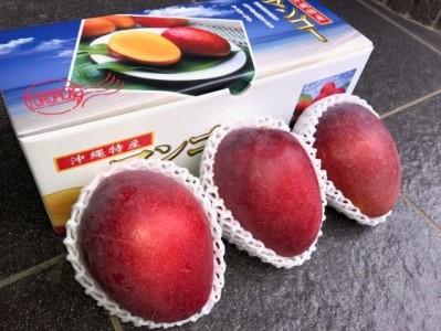 【贈呈用】完熟アップルマンゴー3玉(約1kg)