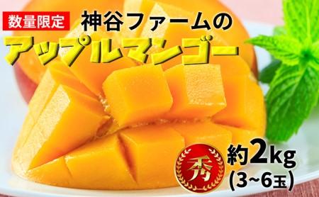 神谷ファームのアップルマンゴー(秀)約2kg(3~6玉)
