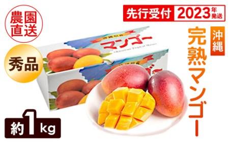 【2021年発送】ヤマト農園 完熟マンゴー約1kg(秀品)