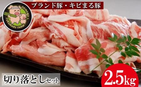 【ブランド豚・キビまる豚】切り落とし 約2.5kg