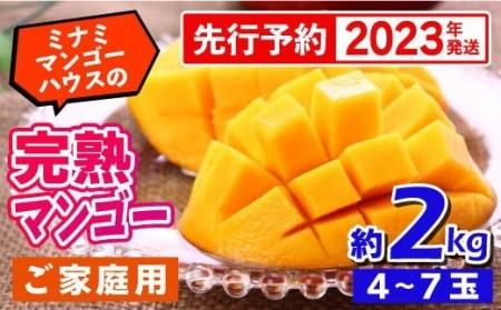 【2021年発送・家庭用】ミナミマンゴーハウスの完熟マンゴー 約2kg
