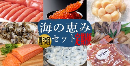 しらぬか海の恵みセット【年3回定期便】(50,000円)