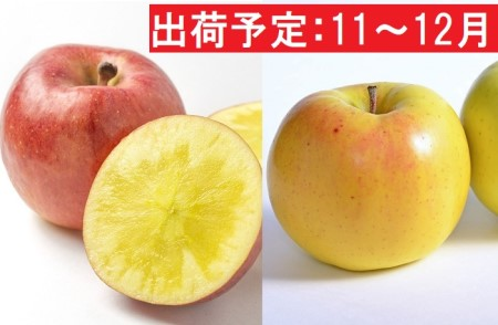 11~12月 贈答用 高徳&こうこう約3kg【弘前市産・青森りんご】