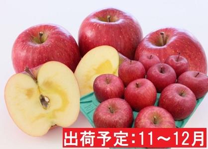 11~12月 贈答規格 蜜入りEMサンふじ約3kg 糖度13度以上 【弘前市産・青森りんご・11月・12月】