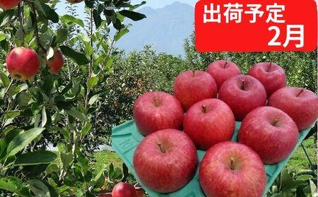 2~3月 贈答用 EMサンふじ約3kg 糖度13度以上【弘前市産・青森りんご】