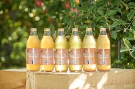 100%リンゴだけで作った リンゴジュース 飲み比べ1L×6本セット(王林・ジョナゴールド・サンふじ 各2本)