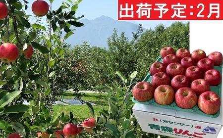 2月 訳あり EM葉取らずサンふじ約10kg 糖度13度以上【弘前市産・青森りんご】