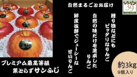 1~3月 [特選」プレミアム葉とらずサンふじ約3kg 9個入り【弘前市産・青森りんご】