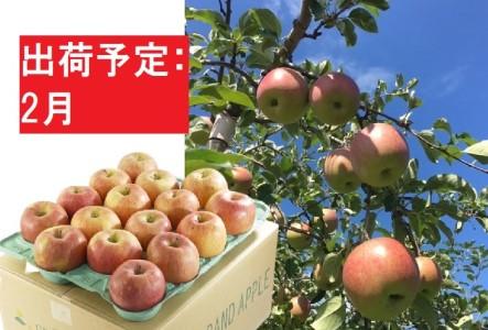 2月 美味!特A 葉とらずサンふじ約10kg【弘前市産・青森りんご】