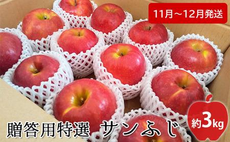 【高谷農園】12月発送 贈答用特選 サンふじ約3kg【弘前市産・青森りんご】