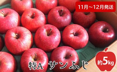 【高谷農園】12月発送 特A サンふじ約5kg【弘前市産・青森りんご】