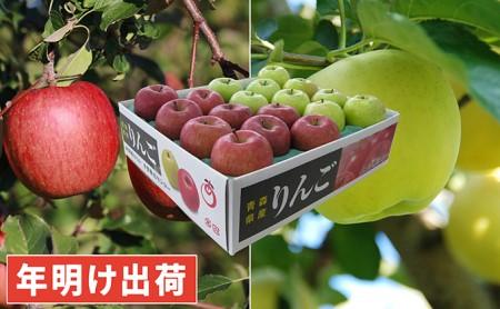 年明け サンふじ×王林約5kg 青森県平川市産