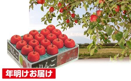 年明け 蜜入り糖度14度以上サンふじ約5kg 青森県平川市産
