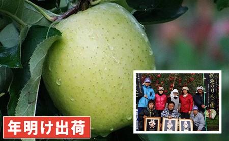 年明け 親子三代最高位の王林約3kg家庭用