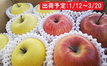年明け 吹田りんご園 山の完熟サンふじ・王林合計約5kg(詰合せ)津軽広船産
