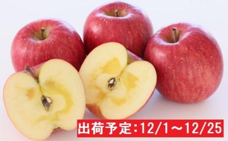 年内 蜜入り糖度14度以上サンふじ約3kg 青森県平川市産