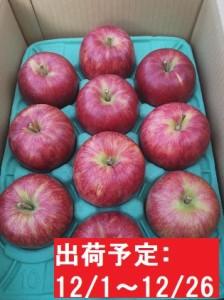 12月 吹田りんご園  山の完熟サンふじ約3kg  津軽広船産