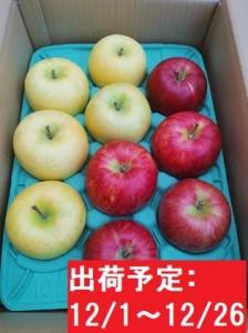 12月 吹田りんご園  山の完熟サンふじ・王林合計約3kg(詰合せ)津軽広船産